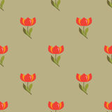 Floral seamless pattern with tulips. Floral seamless pattern with red tulips Royalty Free Stock Image