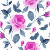 Floral seamless pattern with vibrant flowers Royalty Free Stock Images