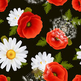 Floral seamless pattern. Vibrant floral poppy flowers dandelions and daisies seamless pattern on dark background vector illustration Stock Photo