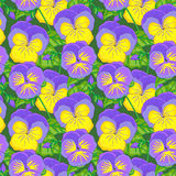 Floral  seamless pattern with Viola Stock Photo