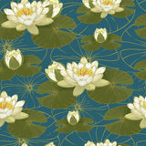 Floral seamless pattern with water lilies. Stock Images