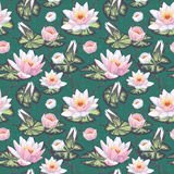 Floral seamless pattern with water lily Royalty Free Stock Image