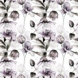 Floral seamless pattern. Watercolor illustration Royalty Free Stock Photos