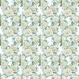 White roses bouquets. Watercolor illustration. Seamless pattern design paper. Floral seamless pattern. Watercolor illustration. Spring symbol. First flowers Royalty Free Stock Image