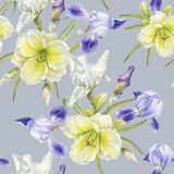 Floral seamless pattern with watercolor iris Royalty Free Stock Photos