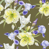 Floral seamless pattern with watercolor iris, daylily Royalty Free Stock Image
