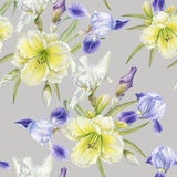 Floral seamless pattern with watercolor iris, daylily Stock Photos