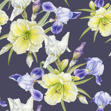 Floral seamless pattern with watercolor iris, daylily Royalty Free Stock Photography
