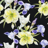 Floral seamless pattern with watercolor iris, lilies. Background with flowers Royalty Free Stock Photography