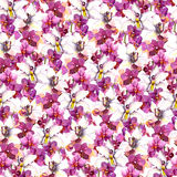 Floral seamless pattern with watercolor orchid flowers on white background Stock Image