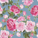 Floral seamless pattern with watercolor pink roses Stock Images