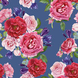 Floral seamless pattern with watercolor red and pink roses and crocuses Royalty Free Stock Images