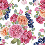 Floral seamless pattern with watercolor roses and black rowan berries Stock Images