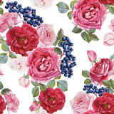 Floral seamless pattern with watercolor roses, black rowan berries Stock Image
