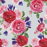 Floral seamless pattern with watercolor roses and crocuses Royalty Free Stock Photography