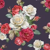 Floral seamless pattern with watercolor roses and leaves. Floral seamless pattern with watercolor white and red roses on the violet background stock illustration