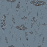 Floral seamless pattern. With wheat Royalty Free Stock Image