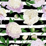 Floral Seamless Pattern with White Peonies. Spring Blooming Flowers Background for Fabric, Prints, Wedding Invitation. Floral Seamless Pattern with White Peonies Stock Images