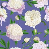 Floral Seamless Pattern with White Peonies. Spring Blooming Flowers Background for Fabric, Prints, Wedding Invitation. Floral Seamless Pattern with White Peonies Stock Photography