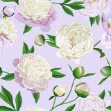 Floral Seamless Pattern with White Peonies. Spring Blooming Flowers Background for Fabric, Prints, Wedding Invitation. Floral Seamless Pattern with White Peonies Stock Photos