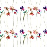 Floral seamless pattern of wild flowers. Watercolor illustration Royalty Free Stock Photos