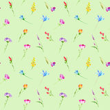 Floral seamless pattern of a wild flowers and herbs. Buttercup, cornflower, clover, bluebell, snowdrop flowers. Watercolor hand drawn illustration.Green Stock Photography