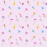 Floral seamless pattern of a wild flowers and herbs. Buttercup, cornflower, clover, bluebell, snowdrop flowers. Watercolor hand drawn illustration. Pink Stock Photos