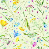 Floral seamless pattern of a wild flowers and herbs on a green background. Buttercup,cornflower,clover,bluebell,forget-me-not,vetch,grass,lobelia,snowdrop stock illustration