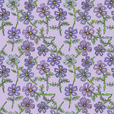Floral seamless pattern with wildflowers. Stock Images