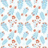 Floral seamless pattern with winter ash berry Stock Photo