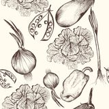 Floral Seamless Pattern With Engraved Vegetables Stock Photos
