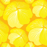 Floral seamless pattern with yellow flowers Royalty Free Stock Images