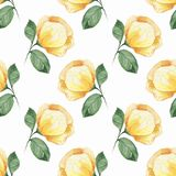 Floral seamless pattern. Yellow flowers. Hand drawn watercolor floral seamless pattern Stock Photos