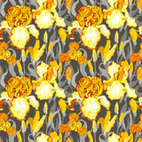 Floral seamless pattern. Yellow iris flower background. Royalty Free Stock Photo