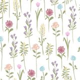 Floral seamless pattern for your design Stock Photos