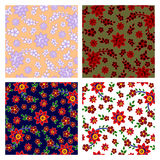 Floral seamless patterns collection. Vector seamless patterns collection in four colors Stock Photo