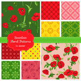 Floral Seamless Patterns - Poppy. Theme - in vector Royalty Free Stock Photo