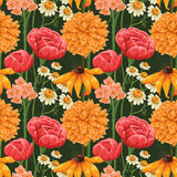 Floral seamless patterns Stock Photography