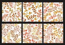 Floral seamless patterns set Royalty Free Stock Photos