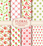 Floral seamless patterns. Vector set. Stock Image