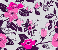 Floral  seamless retro pattern Stock Images
