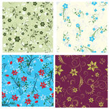 Floral seamless set Royalty Free Stock Image