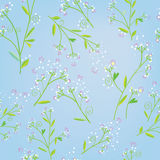 Floral seamless spring pattern in tender style. Graphic illustration Royalty Free Stock Photo