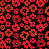 Floral seamless stylish pattern with red poppies. Floral seamless stylish pattern with a red poppies Royalty Free Stock Images