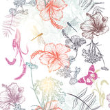 Floral seamless vector background with engraved flowers hibiscus Royalty Free Stock Photos