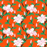 Floral seamless vector pattern with peony flowers Royalty Free Stock Photography