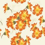 Floral seamless vector wallpaper pattern with   flowers Stock Photos
