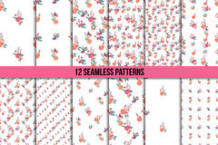 Floral Seamless Vintage Wildflowers Pattern Set Royalty Free Stock Photo
