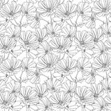 Floral seamless wallpaper Stock Image