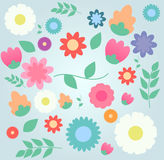 Floral set. Beautiful flowers on a colorful background stock illustration